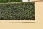 Abels Bay Decorative fencing 30